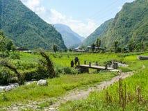 Manera entre los campos a Tatopani, Nepal Imágenes de archivo libres de regalías