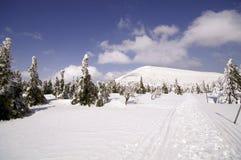 Manera a la montaña de Snezka Fotografía de archivo