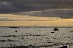 Manera septentrional. Fotos de archivo