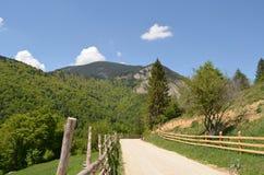 Manera a través de las montañas Foto de archivo libre de regalías
