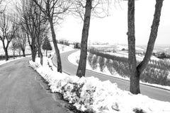 Manera a través de viñedos que nievan Foto blanco y negro de Pekín, China Imágenes de archivo libres de regalías