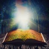 Manera a través del bosque del cuento de hadas en el libro Imagenes de archivo