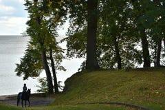 Manera a través del toldo de árboles en la costa con una muchacha que monta a caballo Fotografía de archivo libre de regalías