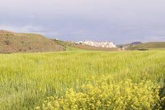 Maneru city, road to Santiago de Compostela, Navarre Stock Images