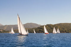 Maneuvers near the shore. Regatta taking place in the Black Sea off the coast of Turkey Stock Photography