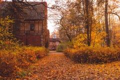 Mangårdsbyggnad med träd i höstfärg- och nedgångträd Gammalt viktorianskt spökat hus med spökar Övergett hus i höstträ