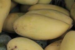 manga amarela no fruto Ásia Imagens de Stock Royalty Free