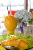 A manga com arroz pegajoso e o abacate congelado bebem Imagens de Stock Royalty Free