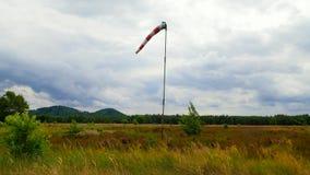 Manga de viento soplada por el viento con el cielo cubierto, el ?rbol solo y el c?sped verde Manga de viento abandonada metrajes