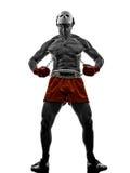 Manga video games fighter gladiator warrior Stock Photography