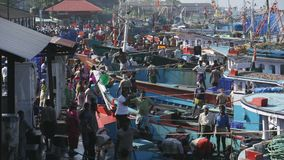 MANGALORE, INDIA -2011: Fishermen transferring fish catch from sea to trucks on October. MANGALORE, INDIA -2011: Fishermen in Mangalore busy in morning stock footage