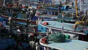 MANGALORE, INDIA -2011: Vissers die vissenvangst overbrengen van overzees aan vrachtwagens op Oktober stock footage