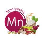 manganeso Fuentes de la comida Productos con el contenido máximo de microelementos Foto de archivo