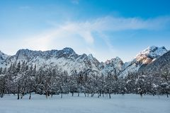 Mangart mountain range seen from snow covert frozen lake Fusine. Mangart mountain range and forest seen from snow covert frozen lake Fusine in Italy Royalty Free Stock Photography