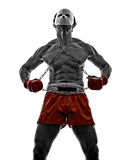 Mangas video games fighter gladiator warrior Stock Photography