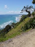 Mangawhai cliff walk: coast view Pohutukawa tree Stock Images