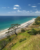 Mangawhai Heads beach Stock Image