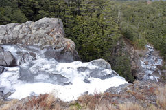 Mangawhero понижается в национальный парк Tongariro Стоковые Изображения
