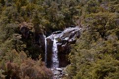 Mangawhero tombe en parc national de Tongariro Photo stock