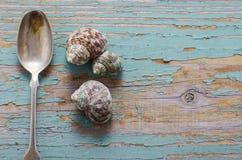 Mangeant des escargots - concept Images libres de droits