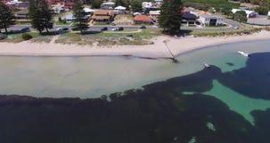 Mangelsbaai die die seagrass met boten tonen in Rockingham WA Australië worden vastgelegd stock video