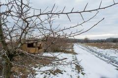 Mangeoire vide en bois d'oiseaux sur l'arbre pendant la saison d'hiver Photo libre de droits