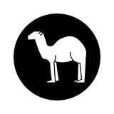 Manger camel figure silhouette icon Royalty Free Stock Photo
