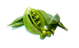 Mangetout pods isolated on white background royalty free stock photo