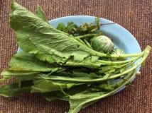 Mangez les légumes frais délicieux Images libres de droits