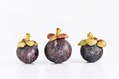 Manggis de fruit de l'Asie Photos libres de droits
