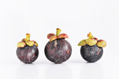 Manggis do fruto de Ásia Fotos de Stock Royalty Free