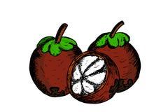 Manggis, indonesian fruit Royalty Free Stock Image