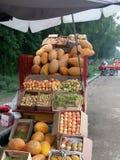 Manghi e meloni con altri frutti fotografia stock
