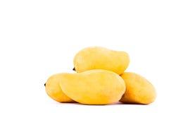 Manghi maturi dolci di un giallo del mucchio sull'alimento sano della frutta del fondo bianco isolato Fotografia Stock Libera da Diritti