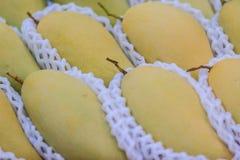 Manghi organici di Nam Dok Mai da vendere al mercato di frutta Il Na Fotografie Stock
