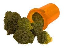 Mangi i vostri veggies Fotografia Stock