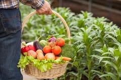 Mangi l'alimento fresco e sarete in buona salute Fotografia Stock Libera da Diritti