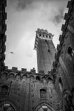 Mangia da torre no black&white Imagem de Stock