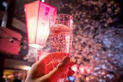 Mangiando un vetro del champagne di Sakura sotto i ciliegi lungo il fiume di Meguro, Meguro-ku, Tokyo, Giappone Il ` medio Meguro immagini stock