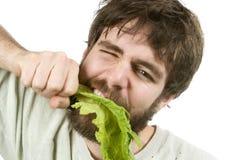 Mangiatore desideroso dell'insalata immagini stock