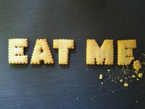 Mangimi! Fotografia Stock Libera da Diritti