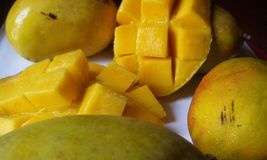 mango Fotos de Stock