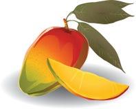 Mango stock illustratie