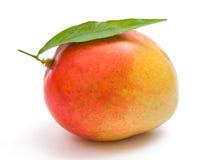 Mango Stock Photos