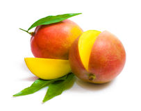 Mango. Two ripe mangos with leaves and a slice on white background stock photography