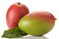 Mango Royalty Free Stock Photo