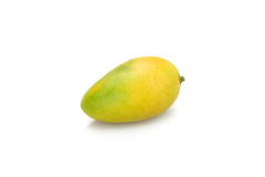 Mango. 1 fresh mango on a white background Royalty Free Stock Image
