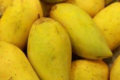 Mango. Fresh mango on fruit market Stock Photography