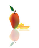Mango. Realistically rendered, with dramatic drop shadows, illustration. Vector (EPS) format is available Royalty Free Stock Image