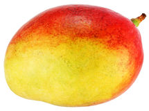 Mango. Royalty Free Stock Photo